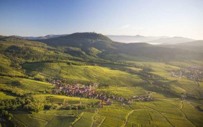 La route des vins d'Alsace sans voiture