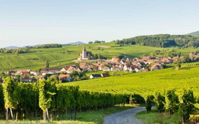 Histoire de la route des vins d'Alsace